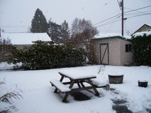 snow_patio
