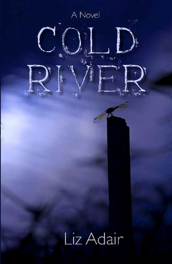 Book Cover White River : Liz adair s new novel cold river a hot read heidi m