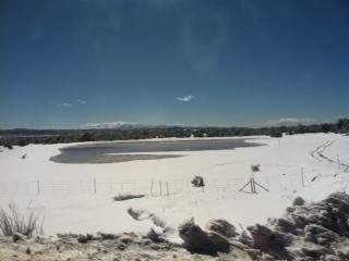 Snow & Pond Strawberry AZ