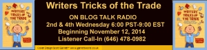TRICKS RADIO BANNER LG